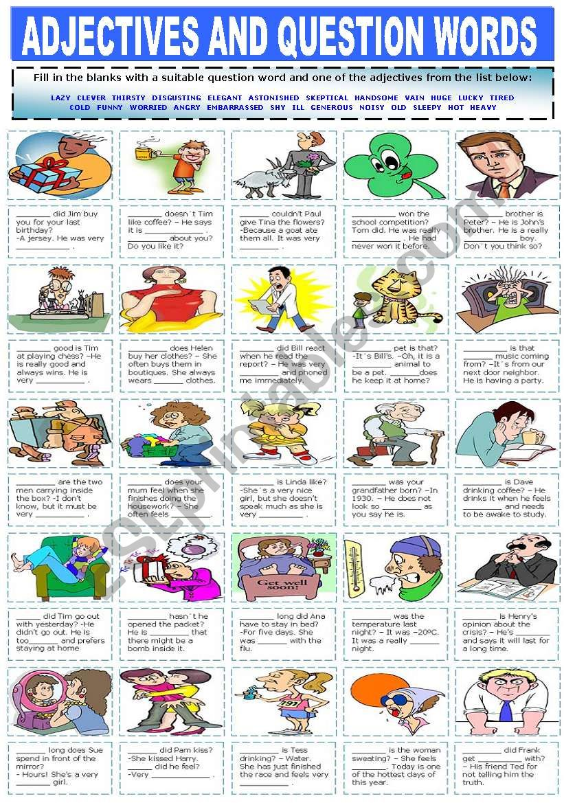 ADJECTIVES AND QUESTION WORDS worksheet