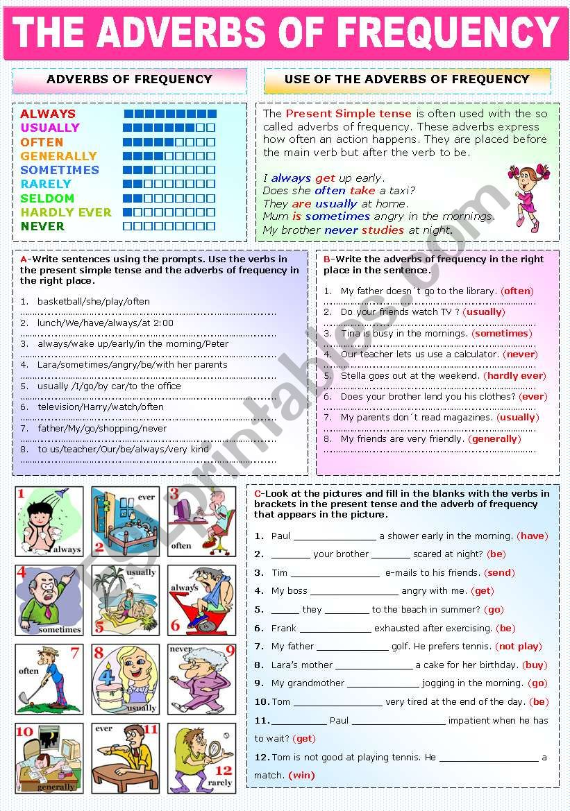 THE ADVERBS OF FREQUENCY worksheet