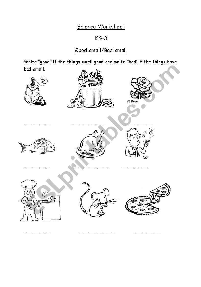 English worksheets: Good and bad smell.