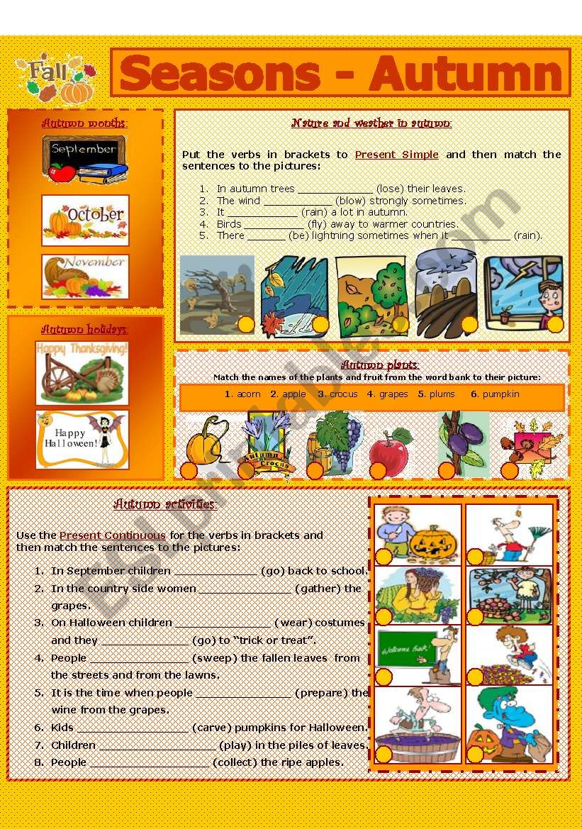 SEASONS - AUTUMN (5 - 8) worksheet