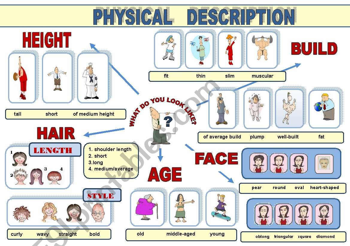 PHYSICAL DESCRIPTION -  POSTER (VOCABULARY-GUIDE IN A POSTER FORMAT)