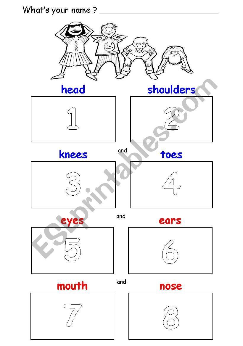 Head, Shoulders, Knees & Toes - Cut & Paste