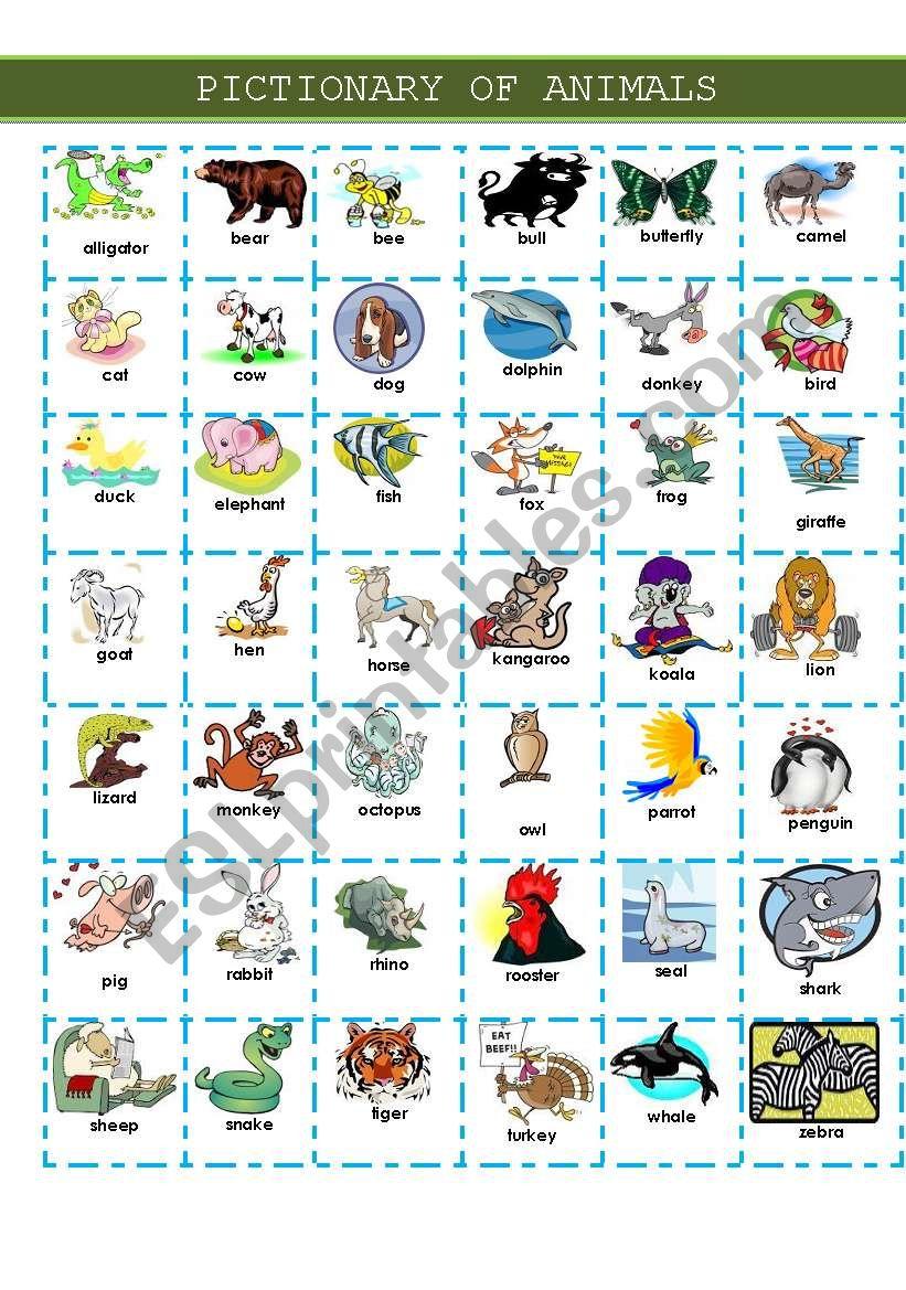 PICTIONARY OF ANIMALS worksheet