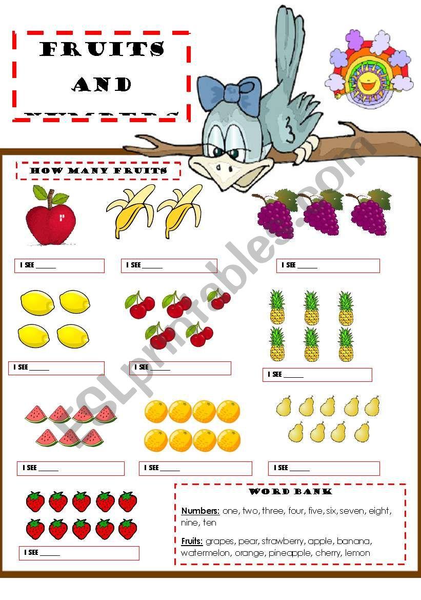 FRUITS & NUMBERS worksheet