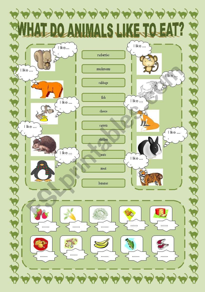 What Do Animals Like to Eat? worksheet