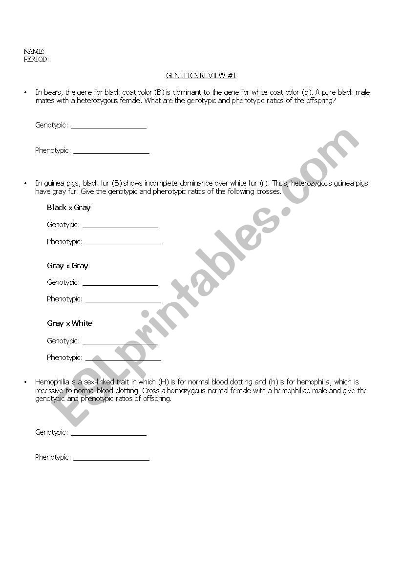 English worksheets: Genetics