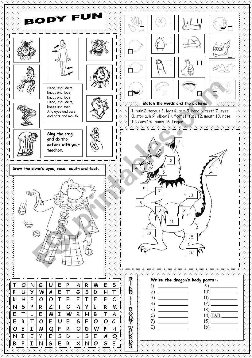 Body Fun worksheet
