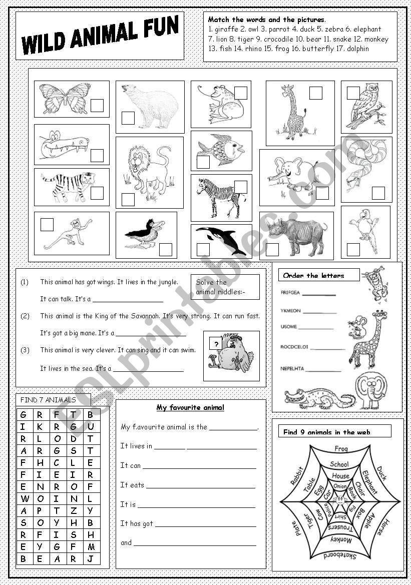 Wild Animal Fun worksheet