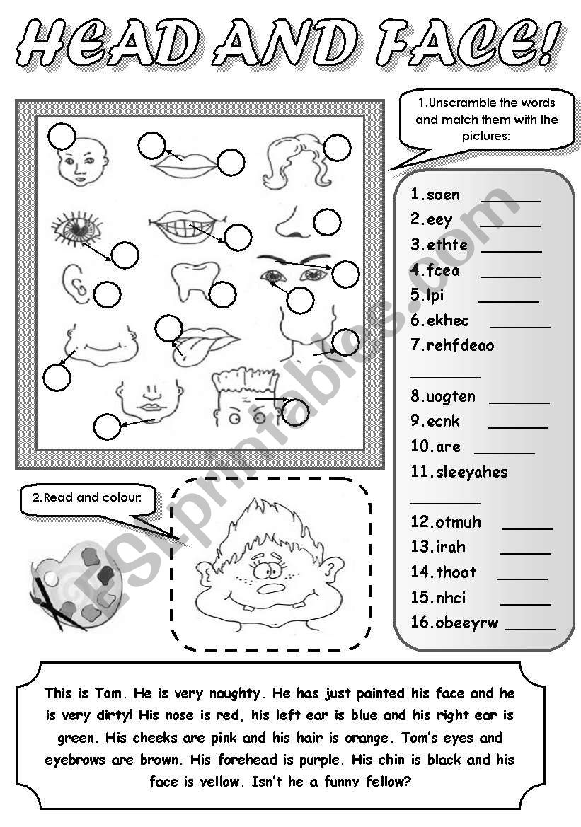 HEAD AND FACE! - PARTS OF FACE AND HEAD (unscramble the words and match them with the pictures, read and colour)