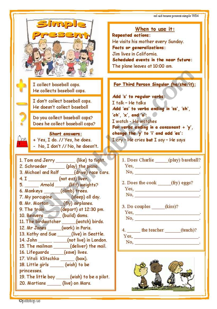 Simple Present Worksheet worksheet