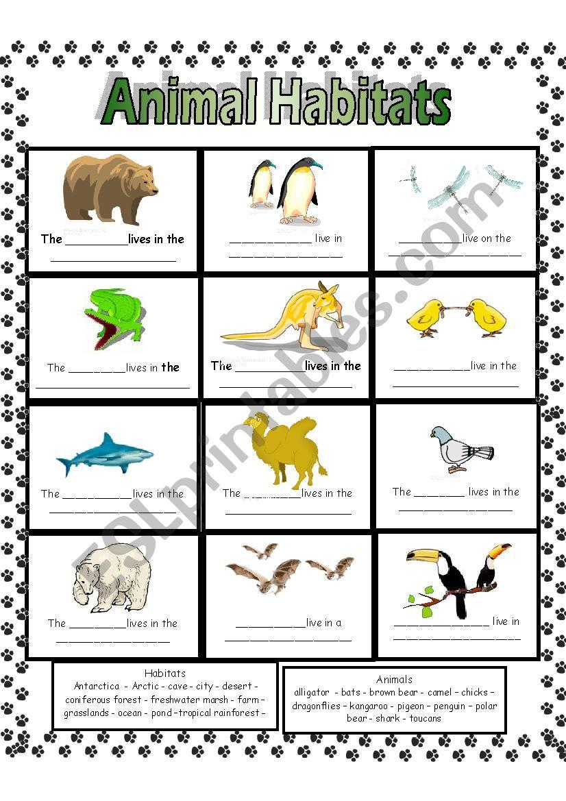 Animal habitats worksheets