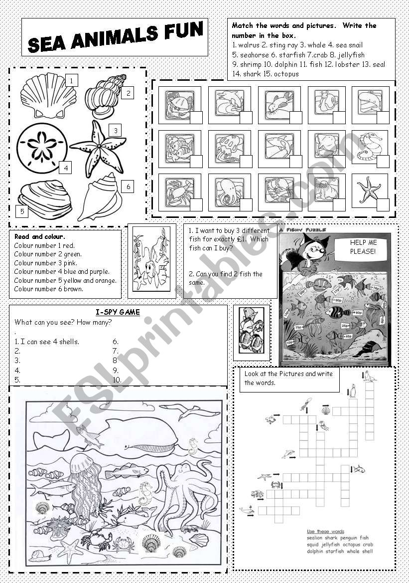 Sea Animals Fun worksheet