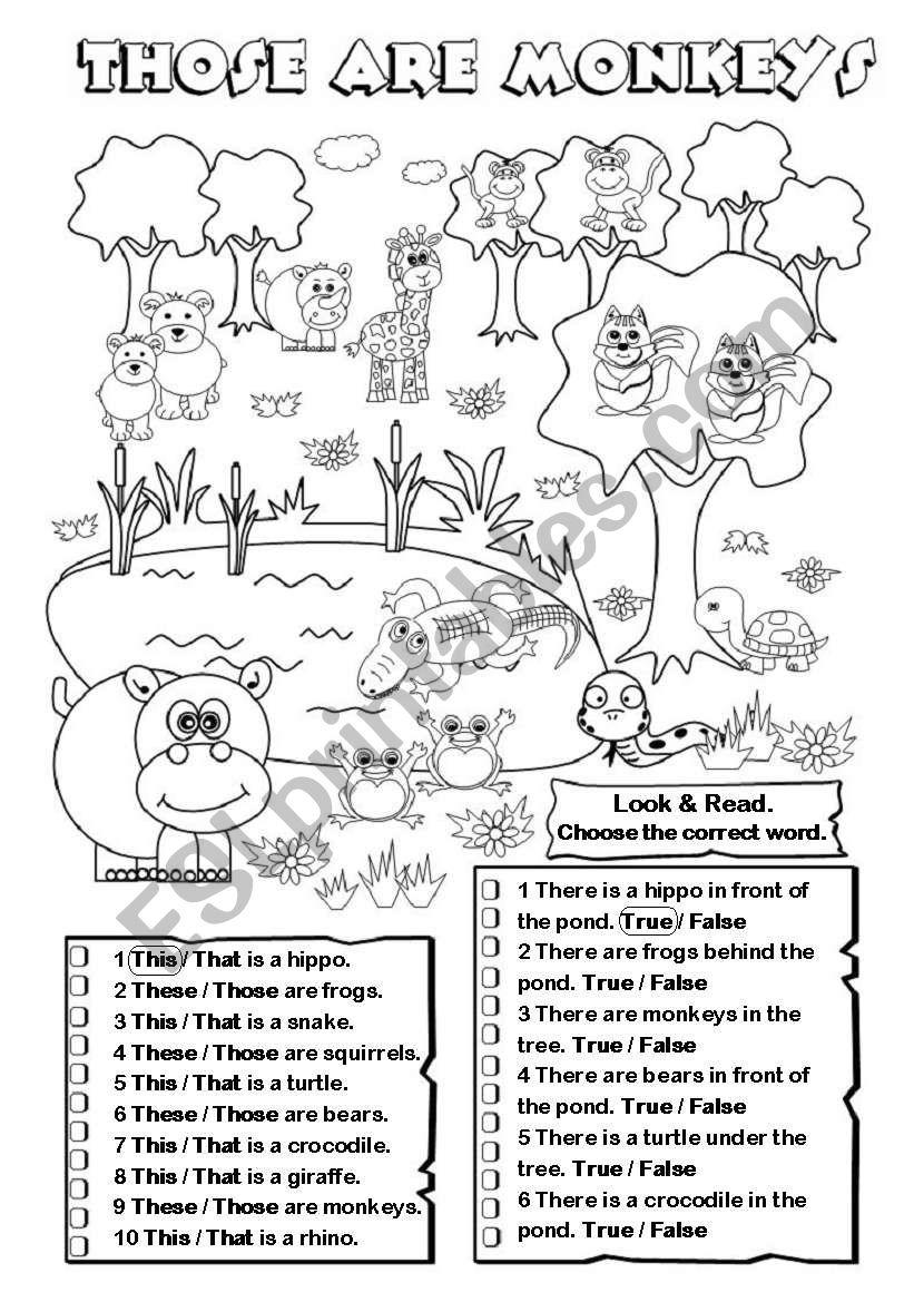 Those are monkeys worksheet