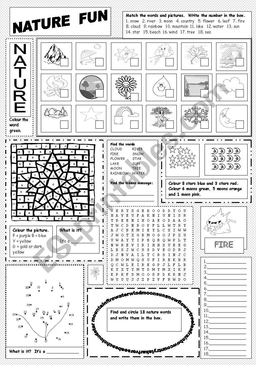 Nature Fun worksheet