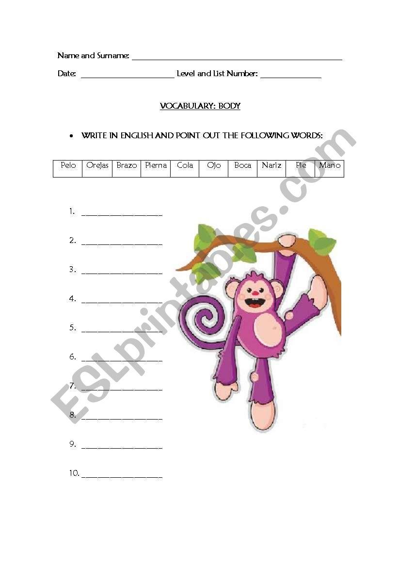 BODY TERMS worksheet