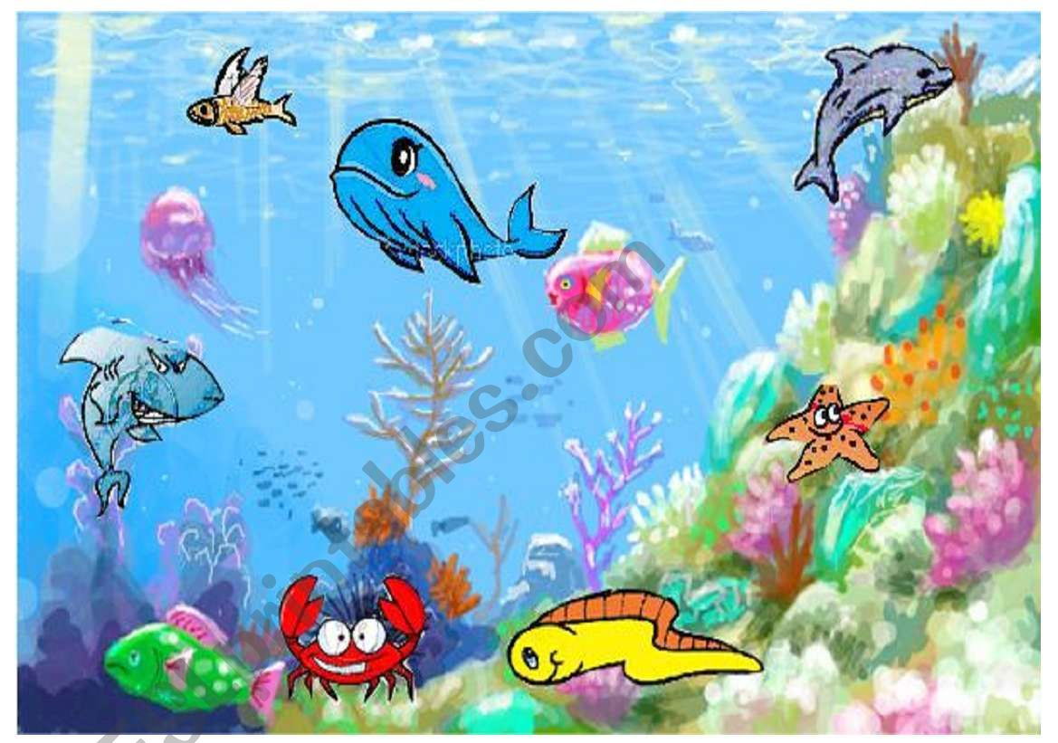 sea animals worksheet