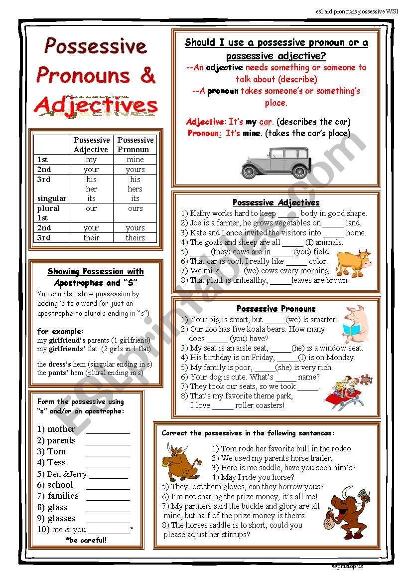 Possessives (Pronouns, Adjectives, apostrophe s)