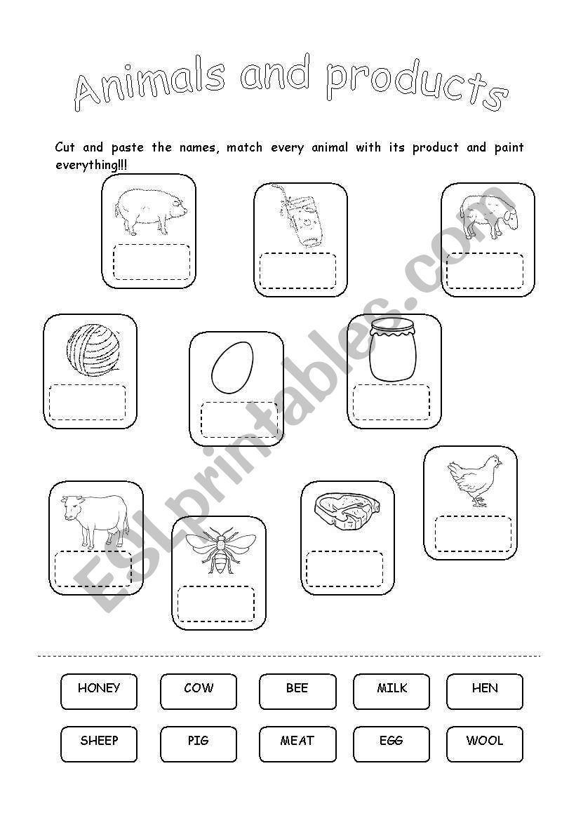 ANIMALS AND THEIR PRODUCTS worksheet