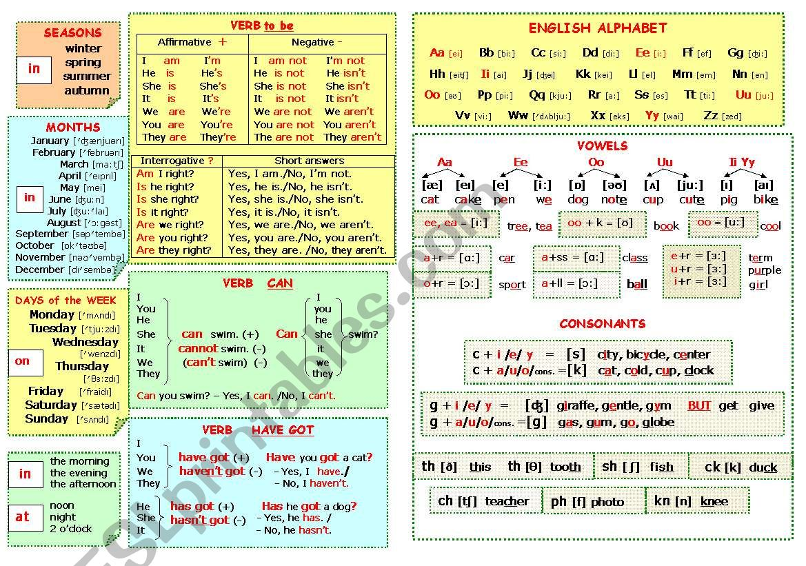 Grammar and vocabulary for beginners in charts