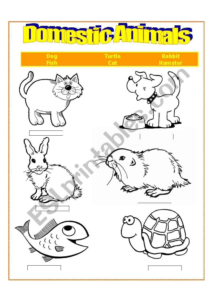english worksheets  domestic animals