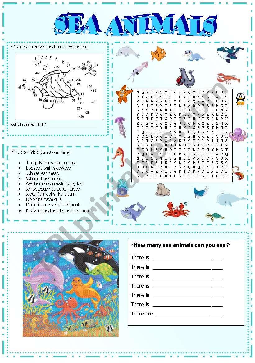 sea animals activities (part3)