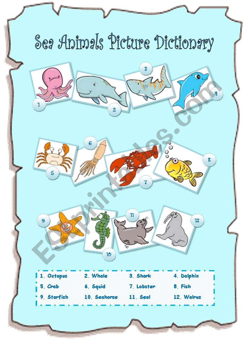 Sea Animals Picture Dictionary