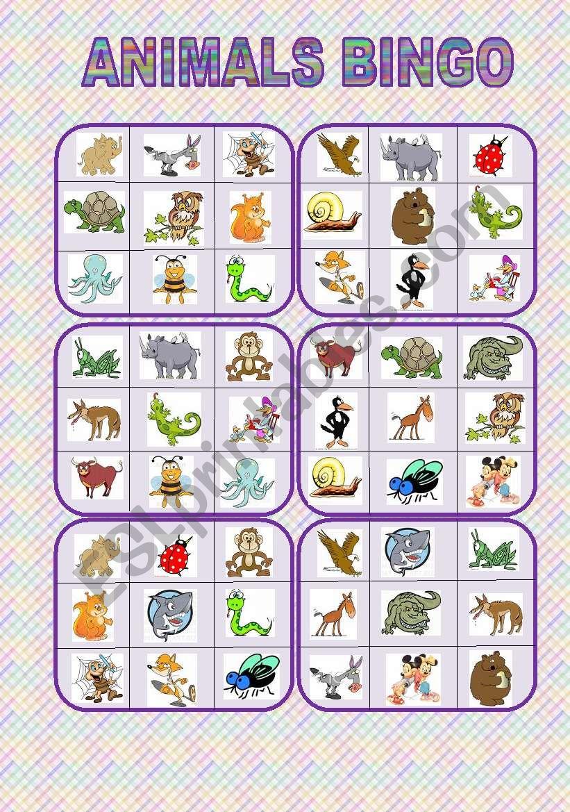 Animals bingo worksheet