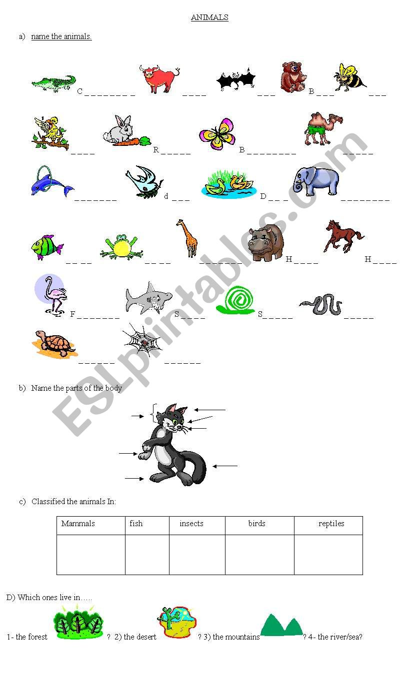 Animal Classification Esl Worksheet By Cositadulce