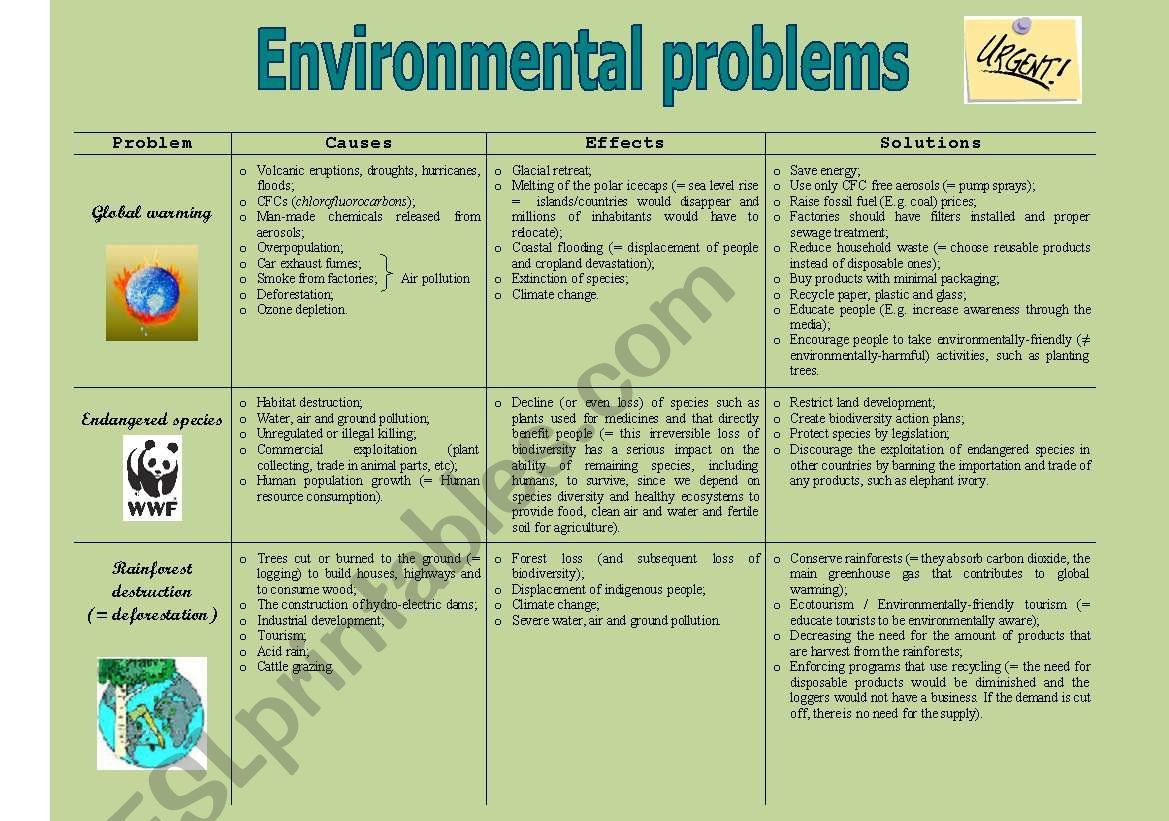 essay on environmental problems causes effects and solutions Causes of environmental problems need essay sample we will write a custom essay sample specifically for you for only $1390/page  causes, effects and solutions.