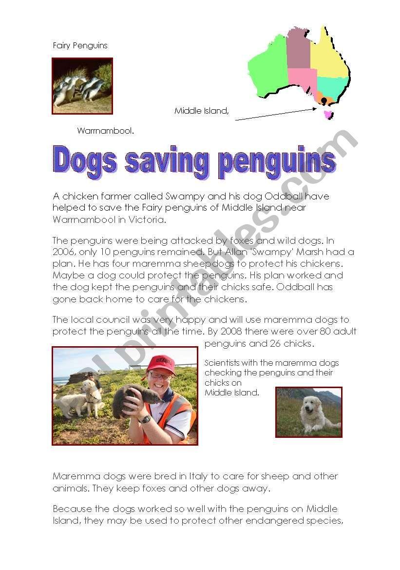 Dogs saving penguins- Pre-Intermediate