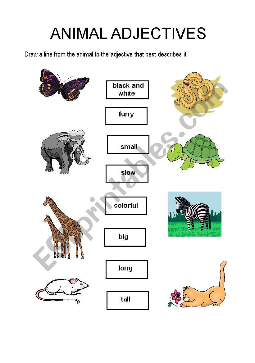 english worksheets animal adjectives. Black Bedroom Furniture Sets. Home Design Ideas