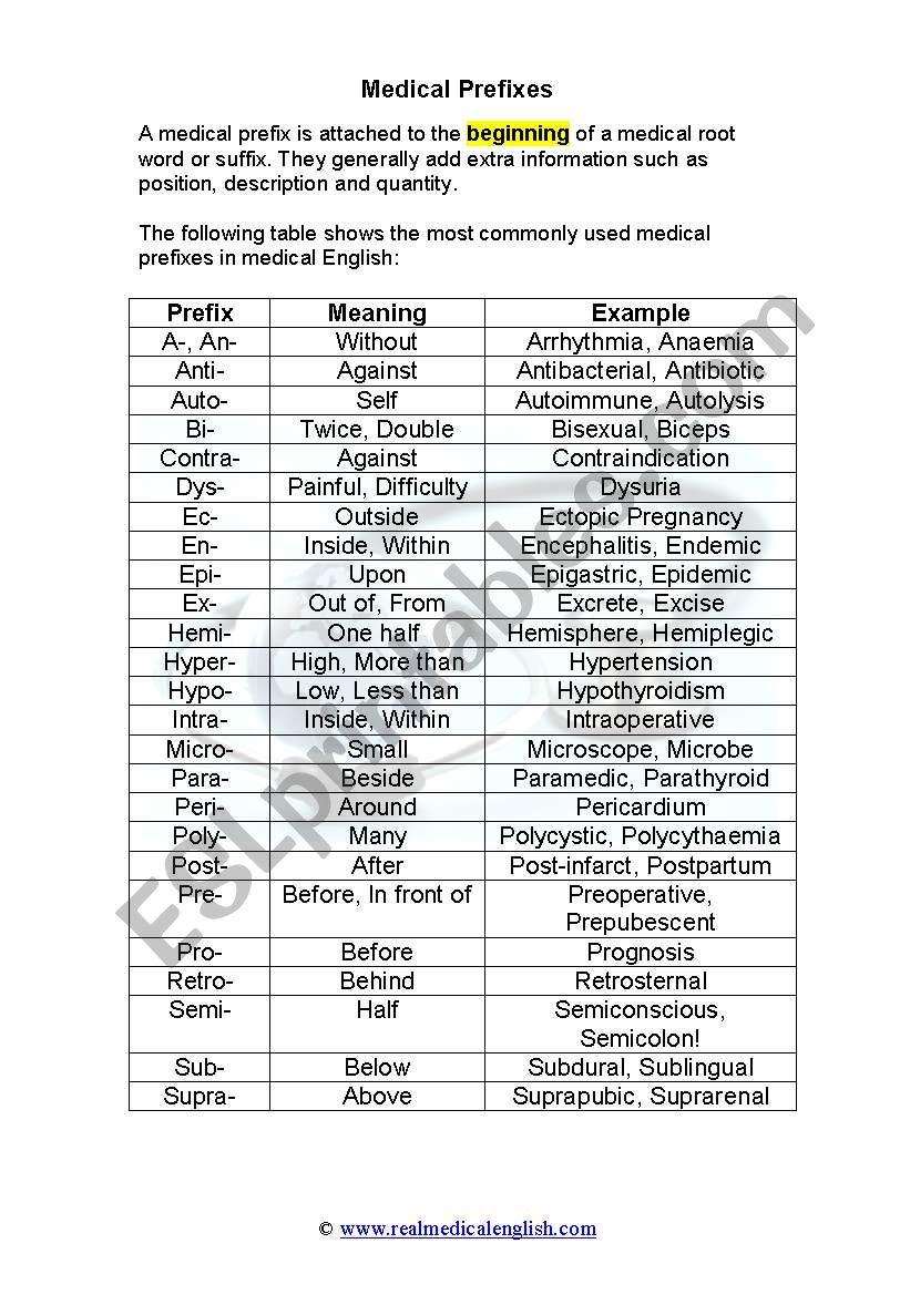 2 Medical Terminology Prefixes Esl Worksheet By