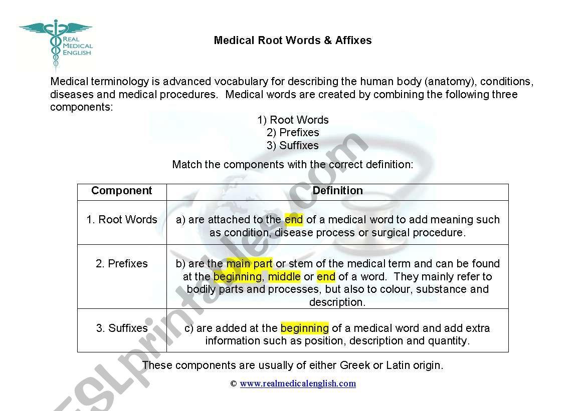 1. Medical Terminology - Introduction - ESL worksheet by ...
