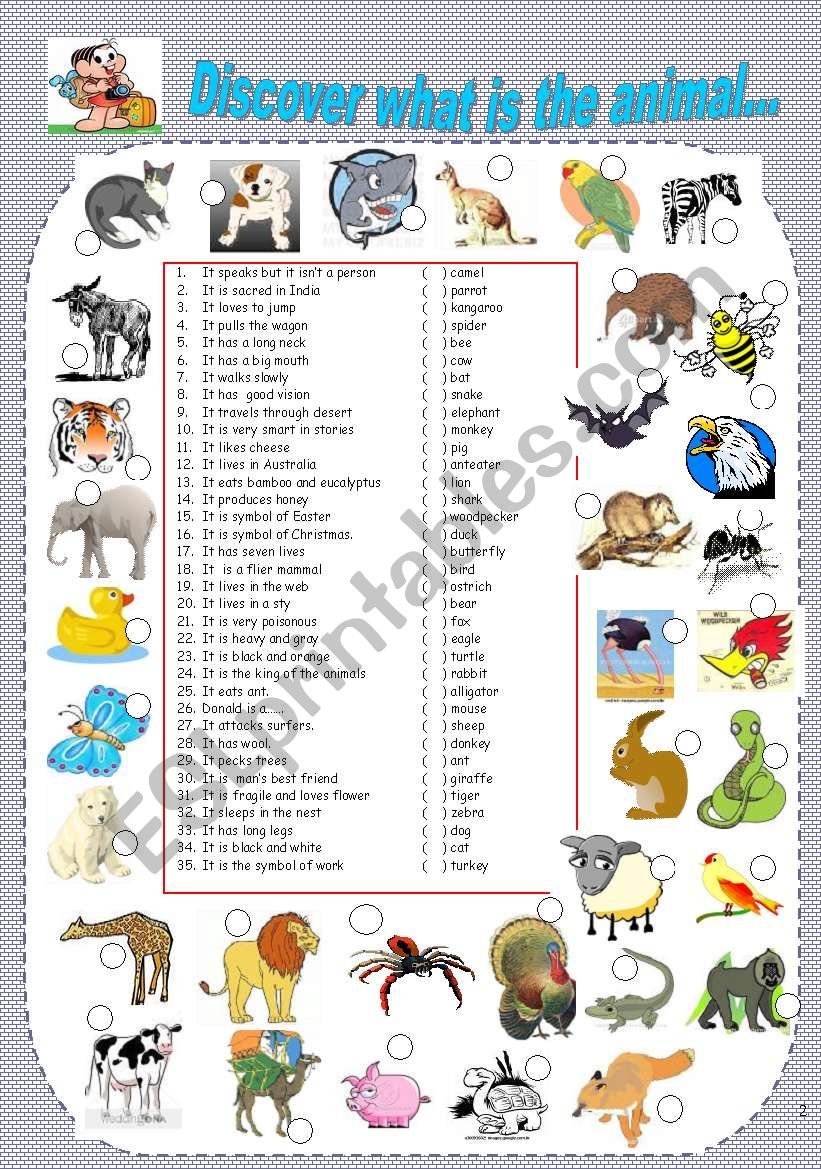 Animal Kingdom- Matching animals to the clues and pics