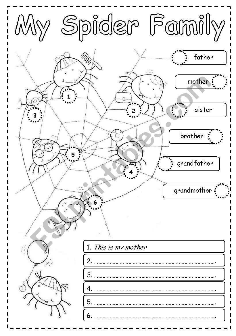 My spider family worksheet