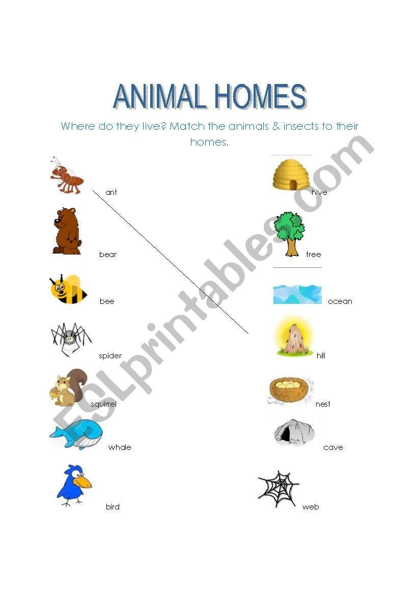 animal homes esl worksheet by dalgi. Black Bedroom Furniture Sets. Home Design Ideas