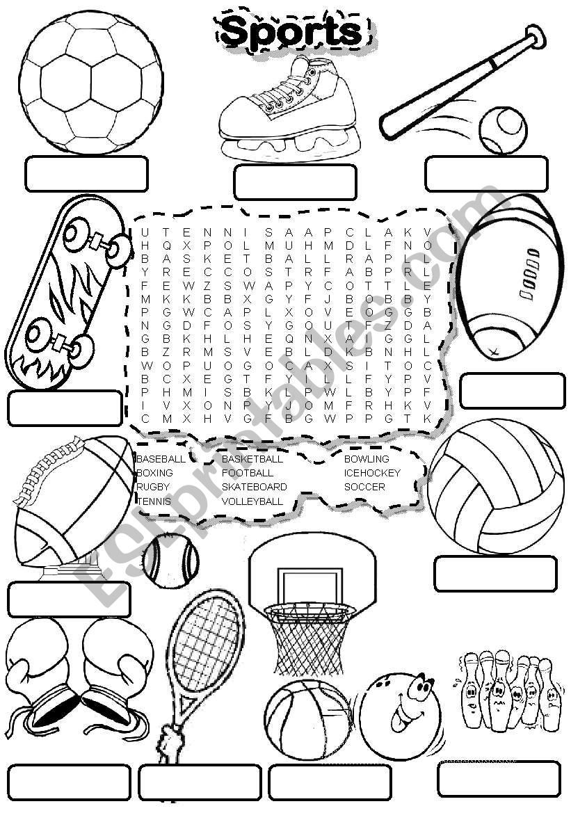 SPORTS WORDSEARCH and FILL IN worksheet