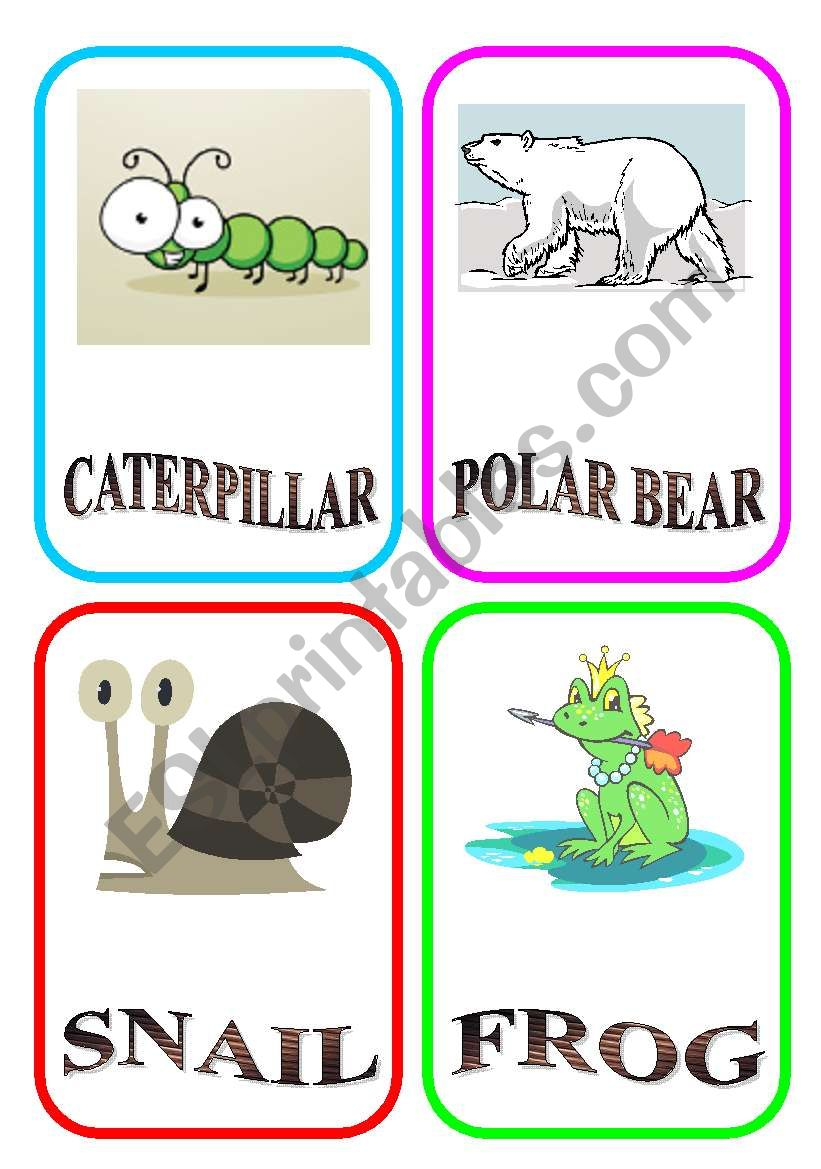 ANIMAL FLASH-CARDS - PART 5 worksheet