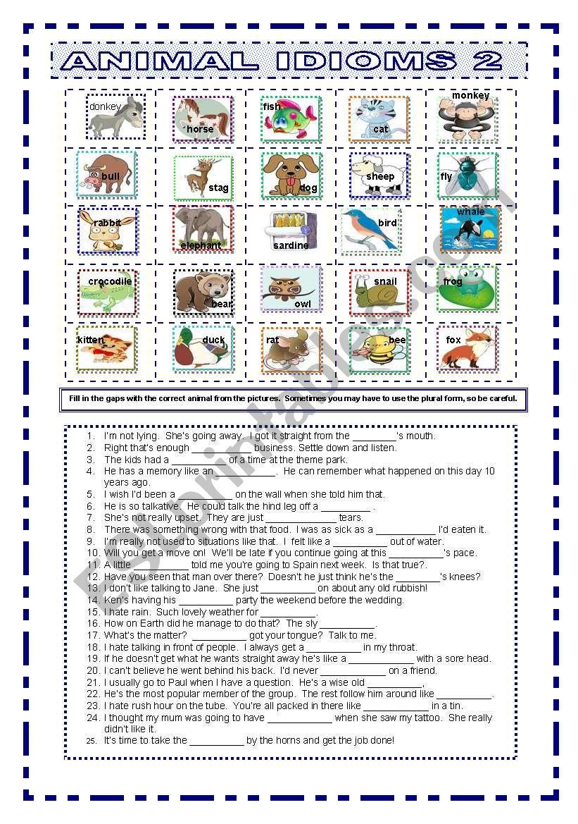 Animal Idioms 2 worksheet