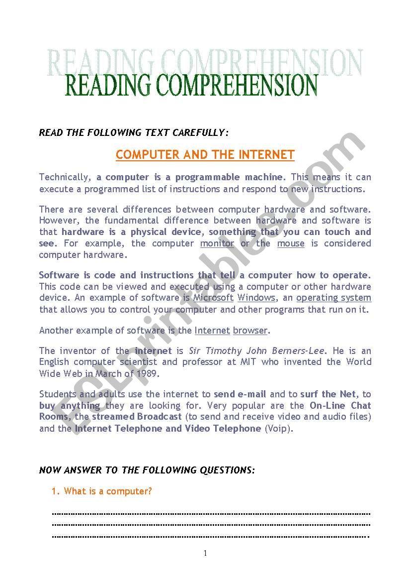 COMPUTER AND THE INTERNET - ESL worksheet by deboravesce