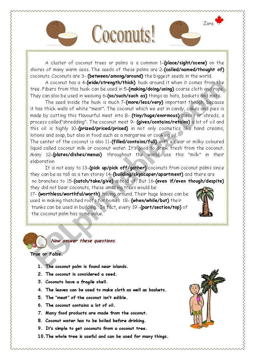 Coconuts! worksheet