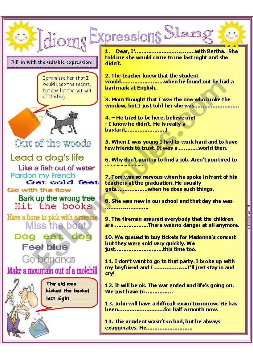 Idioms, slang, expressions worksheet