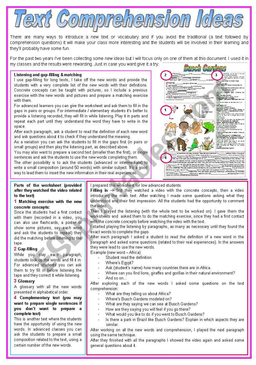 Text Comprehension Ideas worksheet