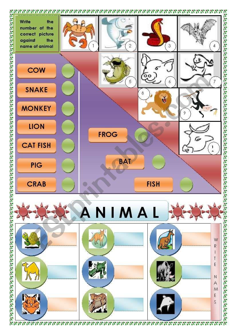 Animals-Vocabulary(Matching and Identifying)