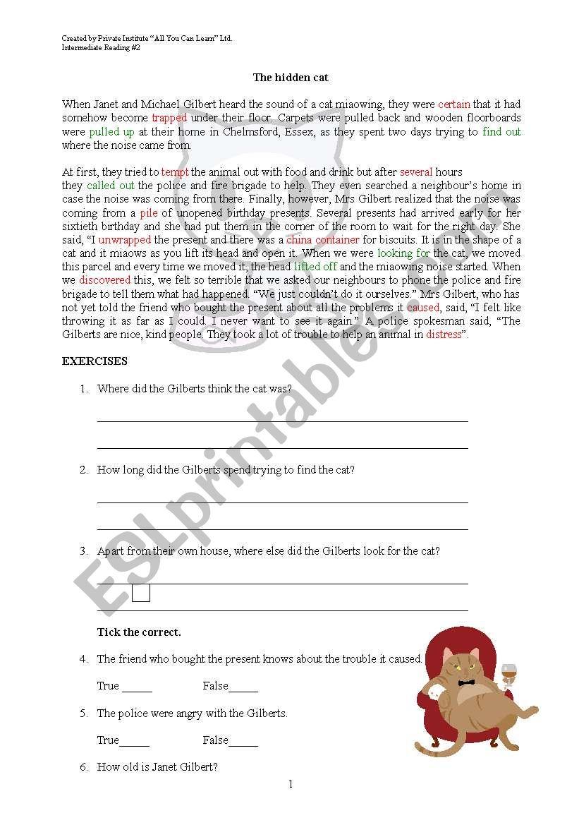 the hidden cat worksheet