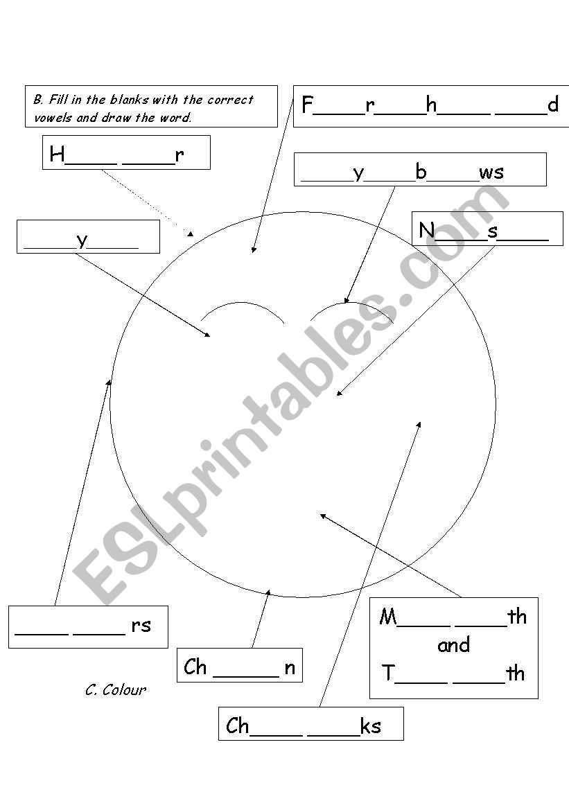 body parts - face worksheet