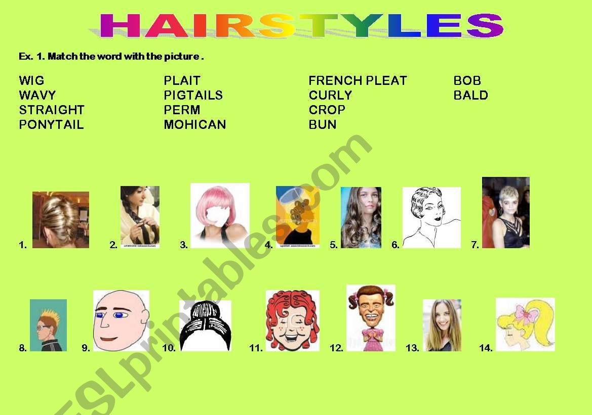 A Hairstyle Crossword: VOCABULARY AND CROSSWORD