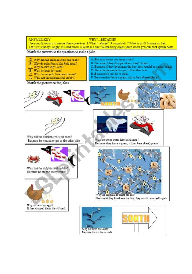 Animal jokes exercise answer key