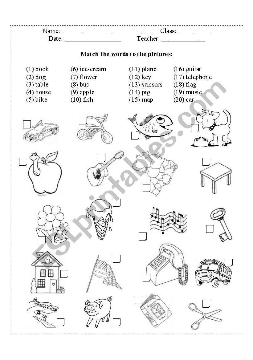 Test for kids worksheet