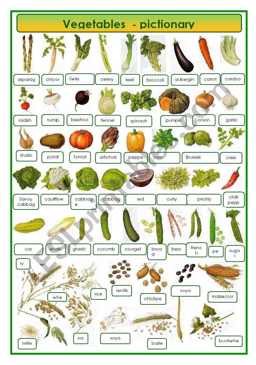 Vegetables - pictionary worksheet